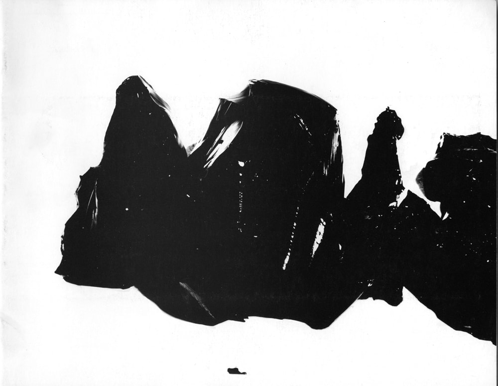 Gelatin Photographs 1-2 by James Welling