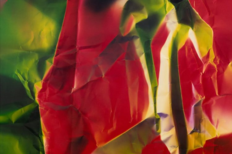 cepa-gallery-Ellen-Carey-dings-shadows-auction-2021-min
