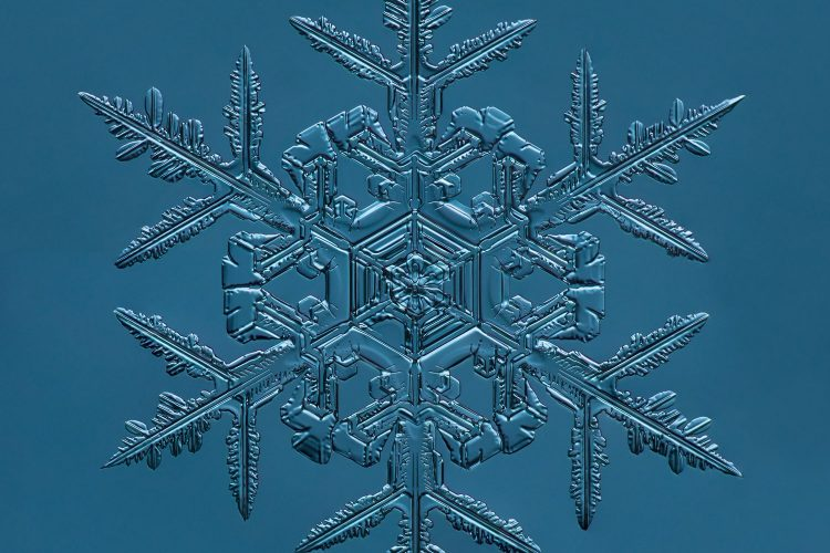 cepa-gallery-doug-levere-snowflake-auction-2021-min