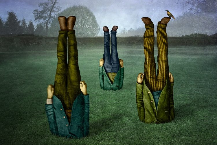 cepa-gallery-maggie-taylor-garden-auction-2021-min